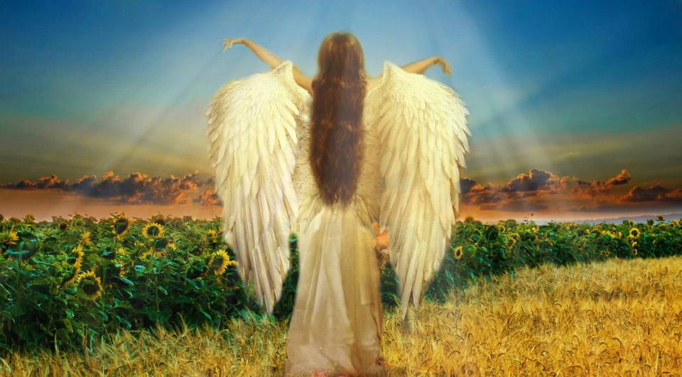 Opleiding tot engelenmedium maaike kerstens for Piekeren engels